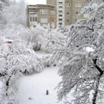 Velykų sniegas 2017-04-16 nuotraukos